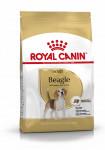 ADULT BEAGLE ROYAL CANIN