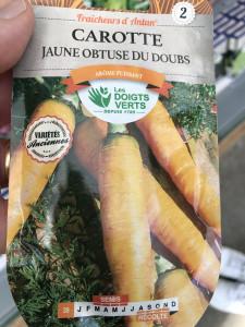 CAROTTE FOUR JAUNE DOUBS DV