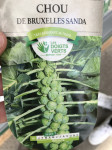 CHOU BRUXELLES SANDA DV