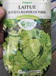 LAITUE BATA BLONDE PARIS DV