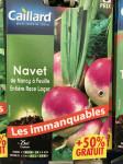 NAVET DE NANCY A FEUILLE ENTIE