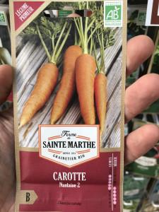 CAROTTE NANTAISE 2