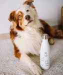 BOUTEILLE ISOTHERME INOX PRETTY DOGS  BLANC 500ML