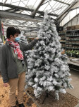 SAPIN VANCOUVER ENNEIGE 210CM