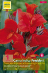 CANNA PRESIDENT, ROUGE  CAL.I X1