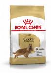 ADULT COCKER ROYAL CANIN